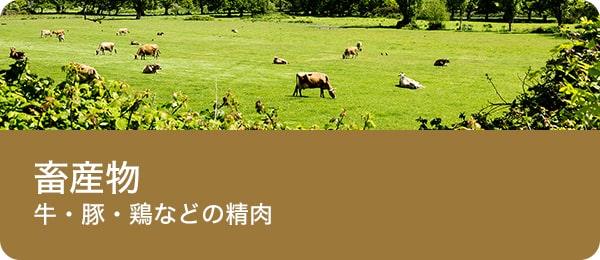 畜産物(牛・豚・鶏肉などの畜肉)