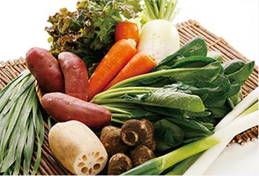 国産の産直野菜