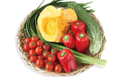 有機・無農薬野菜セット