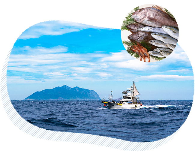 養殖魚等の薬剤使用が気になる方へ
