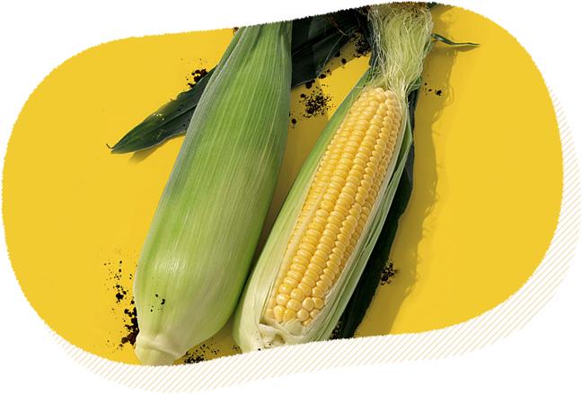 GMO原料に疑問を感じる方へ