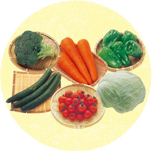 はじめて産直野菜セット